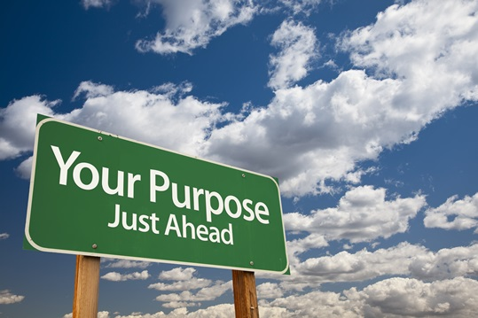 Your Purpose Green Road Sign