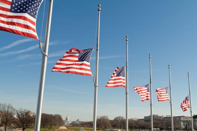 Row American Flags Half Mast Washington DC USA